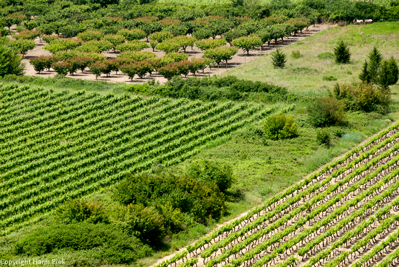 Castillon du Gard, Le Gard, Departement 30, France, Frankrijk